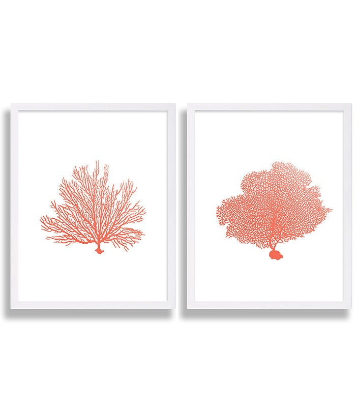 coral wall art prints coral color decor coral prints water