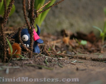 Timid Monsters in the Wild - Gert - 5x7 Photography Print