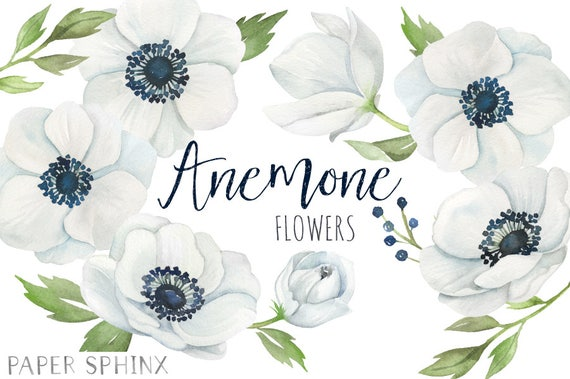Watercolor anemone flowers clipart white wedding flowers watercolor anemone flowers clipart white wedding flowers white blue grey with leaves wedding invitation clip art instant download mightylinksfo Image collections