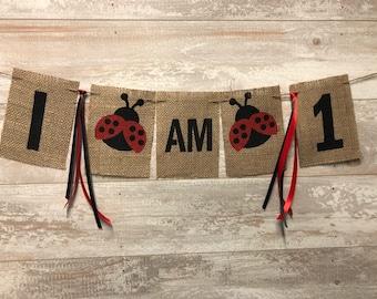 Ladybug One Banner, Garden One Burlap Banner, Ladybug Banner, 1st Birthday Ladybug Party, Girl Ladybug Banner