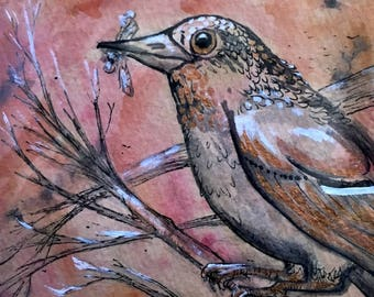"Original Bird Ink Drawing ""Copper Throat"" on tea stained paper - 4x6 inches hand drawn ink illustration, birds, bird art"
