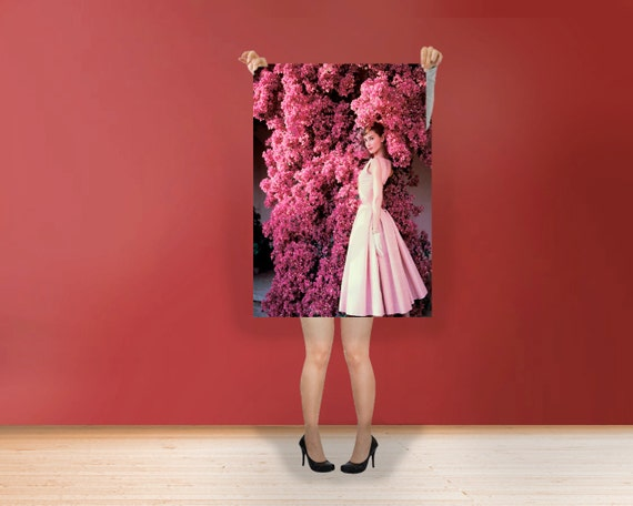 Audrey hepburn pink flowers classic print poster rolled audrey hepburn pink flowers classic print poster rolled hollywoods golden age style wall art black white art print poster rolled photo mightylinksfo Choice Image