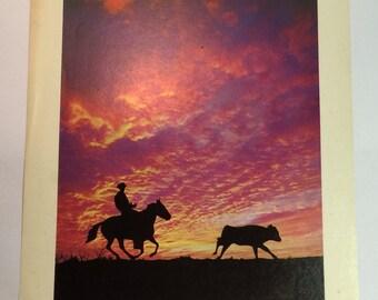 Vintage Cowboy Roping at Sunset Photo Print