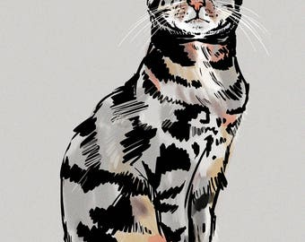 Custom Pet Portrait - Nevil the Cat - Giclee Print - Made to order.