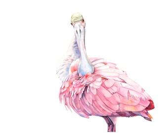 Spoonbill print of watercolour painting S2715  A4  print wall art print - bird art, art print, wildlife print, spoonbill watercolor painting