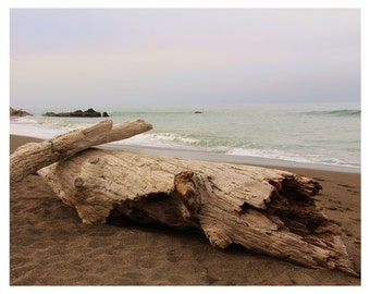 Nature Photography 10 x 8 Fine Art Nature Landscape Photography-California Moonstone Beach-Ocean Photography -Nature-Driftwood- sunset-