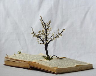 The tree-book, tree paper, paper, tree, library, book folded, library sculpture dreamlike, reader gift