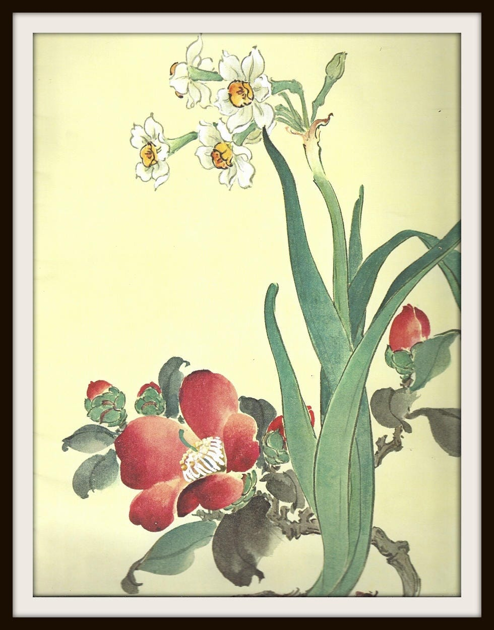 Camellia Narcissus Flowers Chinese Painting Still Life Book