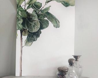 Fiddle Leaf Fig Tree - Art Print