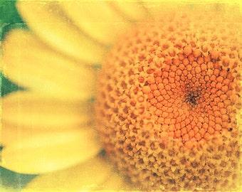 yellow nursery art, Sunflower photograph, yellow bathroom decor, flower print, orange, nature, garden art, summer wall art, green, yoga art