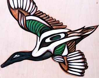 Shoveler Duck Original Painting