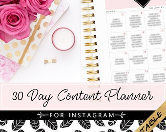 30 Day Instagram Content Planner | Printable Planner | Blush Pink Planner | Social Media Planner | Small Business Planner | Marketing Tools