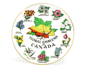 Vintage 'Floral Emblems of Canada' Royal Winton Souvenir Plate (E5535)