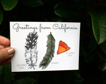 Illustrated Postcard - Greetings from California