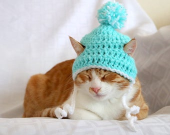 Cat Hat, Beanie for Cats & Kittens, Pom Pom Hat for Male Cats, Toboggan Hat for Boy Cats, Aqua Cat Stocking Cap, Feline Accessories