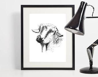 Goat Print | Goat illustration |  Goat Wall Art | Gift for goat lover |