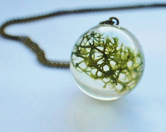 Moss Necklace Terrarium Jewelry Real Forest Lichen Orb Resin Pendant Botanical Dried Plant Nature Woodland