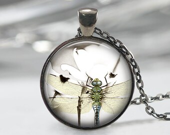 Dragonfly Pendant, Green wing Dragonfly, Dragonfly Jewelry, Jewelry for Women, Dragonfly Keychain, Dragonflies, Gifts for girls, Friend gift