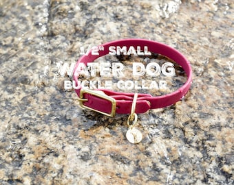 """SMALL 1/2"""" Water Dog Buckle Collar, waterproof, dirt resistant, leather free, Christmas Gift, Dog Gift"""