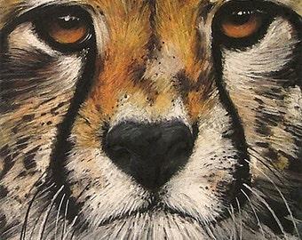 Hunter | greetings card | hand made | handmade | pastel | drawing | animal art | wildlife art | animal card | cheetah | wildlife card