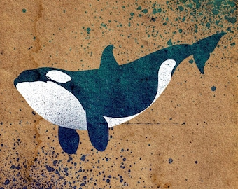 Orca Stencil Solvent Proof Clear Reusable Dolphin
