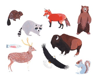 Collection of Animals Card