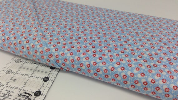 Baby Blue Dots and Red Flowers, Toy Chest Florals From Washington Street Studio's For P&B Textiles, Fabric By The Yard 0417b