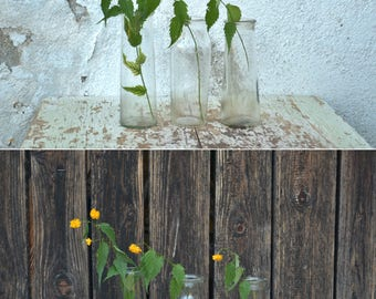 Vintage Special Glass Bottles, Special Jars, Set of 3 Glass Vases, Clear Glass Bottles, Home Decor, Collectible Glass Bottles