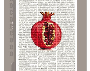 Beautiful Pomegranate Illustration Print on Vintage Dictionary Book page -  Kitchen decor, Botanical art, Artwork