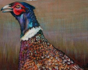 original art  drawing colorful pheasant