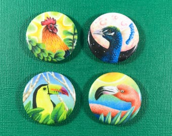 The fabulous favs button 4 pack