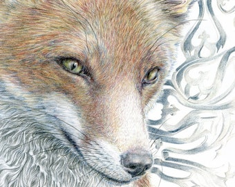 Gothic Fox print - from an original colour pencil drawing by D Y Hide, signed by the artist, also available as a greetings card