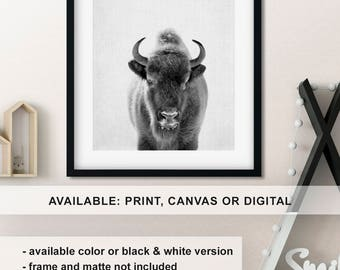 Black and white bison print, Bison poster, Buffalo art print, Buffalo gifts, Buffalo nursery print, Bison picture, Bison wall art Print/Canv