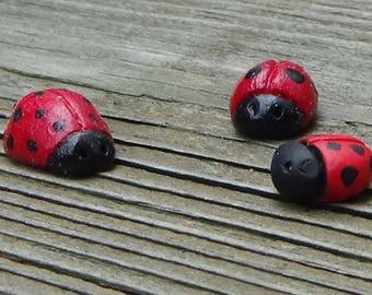 Miniature Lady Bugs - Set of 3