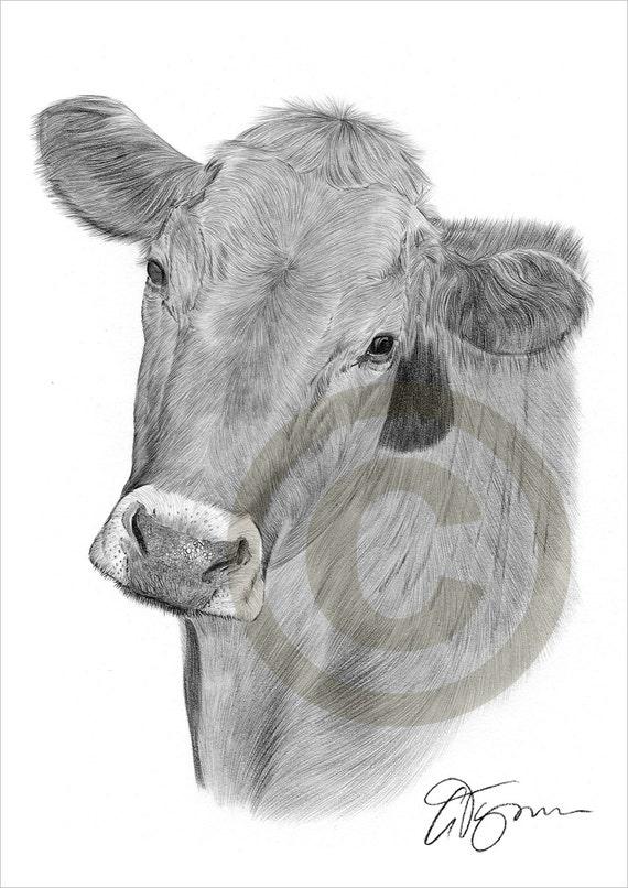 Crayon vache dessin oeuvre de format a4 impression sign e - Vache a imprimer ...
