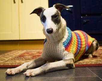 Whippet jumper sweater hand knitted, sighthound jumper, handmade dog jumper READY TO SHIP