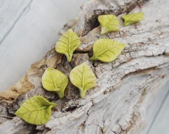 Leaves, hand molded of cold porcelain, unique set