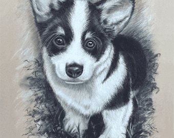 "Corgi Puppy Giclee.  Original drawn in black and white Charcoal. 8"" x 10"" or 11"" x 14"" Giclée Art Print"