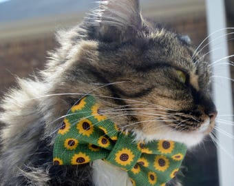 Sunflower collar for cat, cat bow tie with sunflowers, fall cat bow tie collar, Autumn cat bow tie collar, kitten collar, kitten bow tie