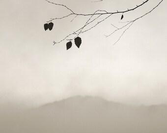 minimalist photography, landscape photography, sepia photography, modern rustic, mountain photography, minimalist nature