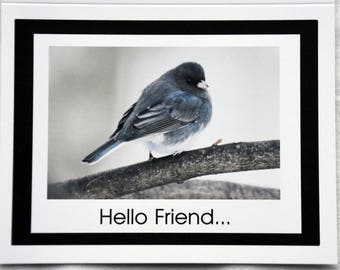 Juncos Saying Hello Friend - Notecards