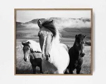 horse print, horse art, southwest print, southwest art, southwest decor, printable horse art, printable horse print, black white horse print