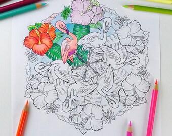 Mandala Coloring Page Flamingo Coloring Pages for Adults | Get well soon Flower Mandala Digital Coloring Hand Drawn Line Art Olga Zaytseva
