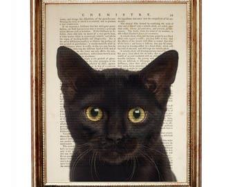 Black Cat Art, Cat Lover Gift, Dictionary Art Print, Black Cat Print, Giclee Art Print, Black Cat Artwork, Cat Decor, Cat Wall Art, Cats Art