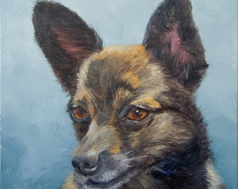 Pomeranian Dachsund, 6x6 Original Oil Painting on Panel by Alice Leggett, Portrait Commission