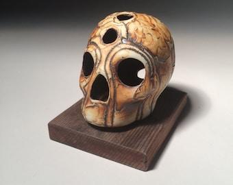 Rugged Holes Skull