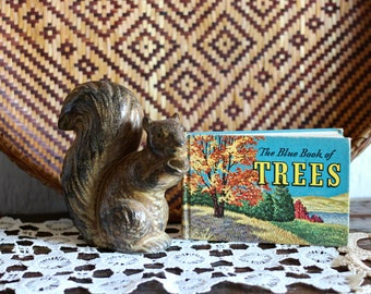 """Vintage book titled """"The Blue Book of Trees"""""""