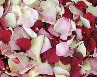 Bridal Bliss Petals.Rose Petals.Wedding Decoration.Flower petals.Flower Girl Petals. Real Rose Petals.Flower Confetti.Confetti.200 Cups. USA