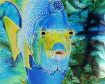 """Sea Life Coral Reef Fish Original Art Print 8 5/8"""" H X  11 1/2"""" W"""