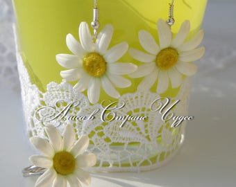 The complete set of ornaments of an earring and Camomile ring